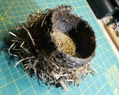 Natural Ground Found Bird 39 s Nest Lacquered for Stability Approx. 6 quot x6 quot x6 quot , Use in Crafts, Dioramas, Sculptures, Etc.