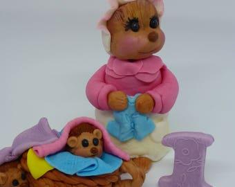 Peter Rabbit Mrs.Tiggy Winkle,Personalised,Birthday,Christening,Baby Shower,Edible,Handmade,Cake Toppers