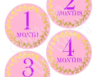 Monthly Baby Stickers - Baby Age Stickers - Baby Milestone Sickers - Baby Girl - Pink Purple and Gold - Baby Photo Prop - Baby Shower Gift