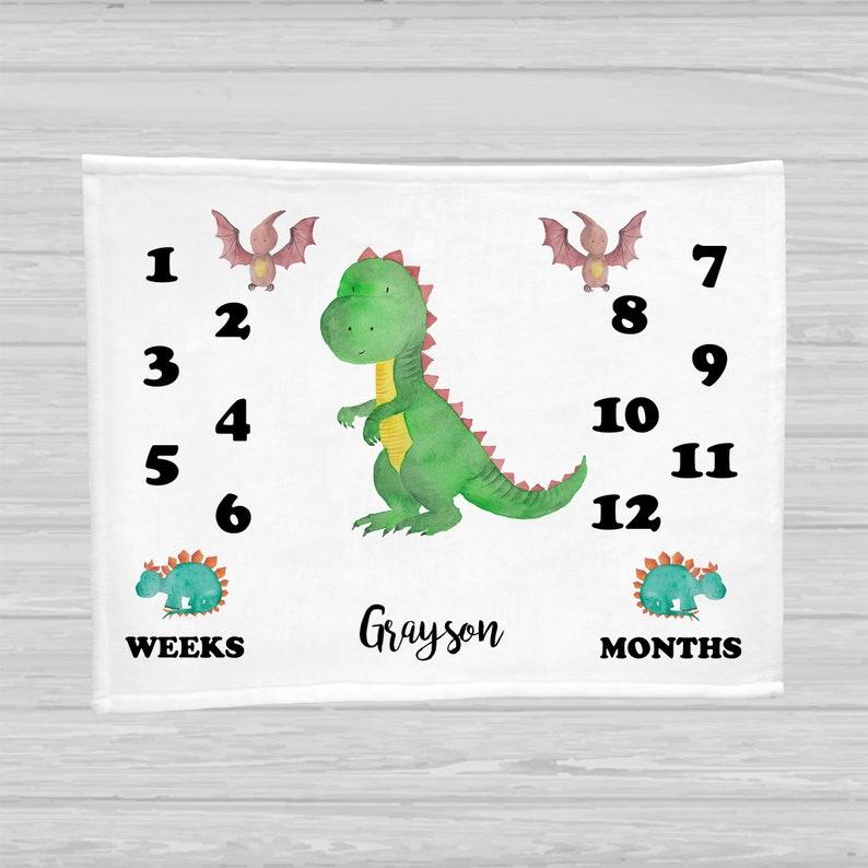 Dinosaur Baby Milestone Blanket  Baby Boy Gift  Monthly Baby 30x40 Minky w/ Name