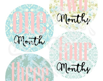 Monthly Baby Stickers - Baby Age Stickers - Girl Vintage Floral - Milestone Stickers - Baby Photo Prop - Baby Shower Gift - Newborn - Floral