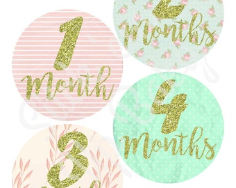 Monthly Baby Stickers - Baby Age Stickers - Baby Girl Gift - Baby Stickers - Baby Photo Prop - Baby Milestone Stickers - Baby Shower Gift