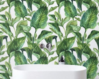 Fondo tropical, Bananna hojas de papel pintado, pegatinas, BW017