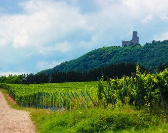 Strollin' Around Alsace
