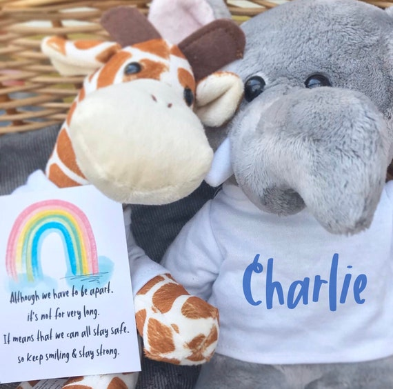 Personalised soft toy   Thinking of you   Social distancing gift   Add any text   Lamb Rabbit Frog Elephant & Giraffe   Children's toy