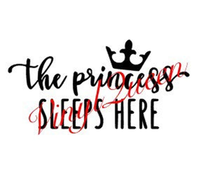 The Princess Sleeps Here Bedroom Baby Nursery Door Vinyl Decal Quote Shadow  Box Frame Gift