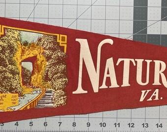 Vintage Natural Chimneys Souvenir Mini Pennant