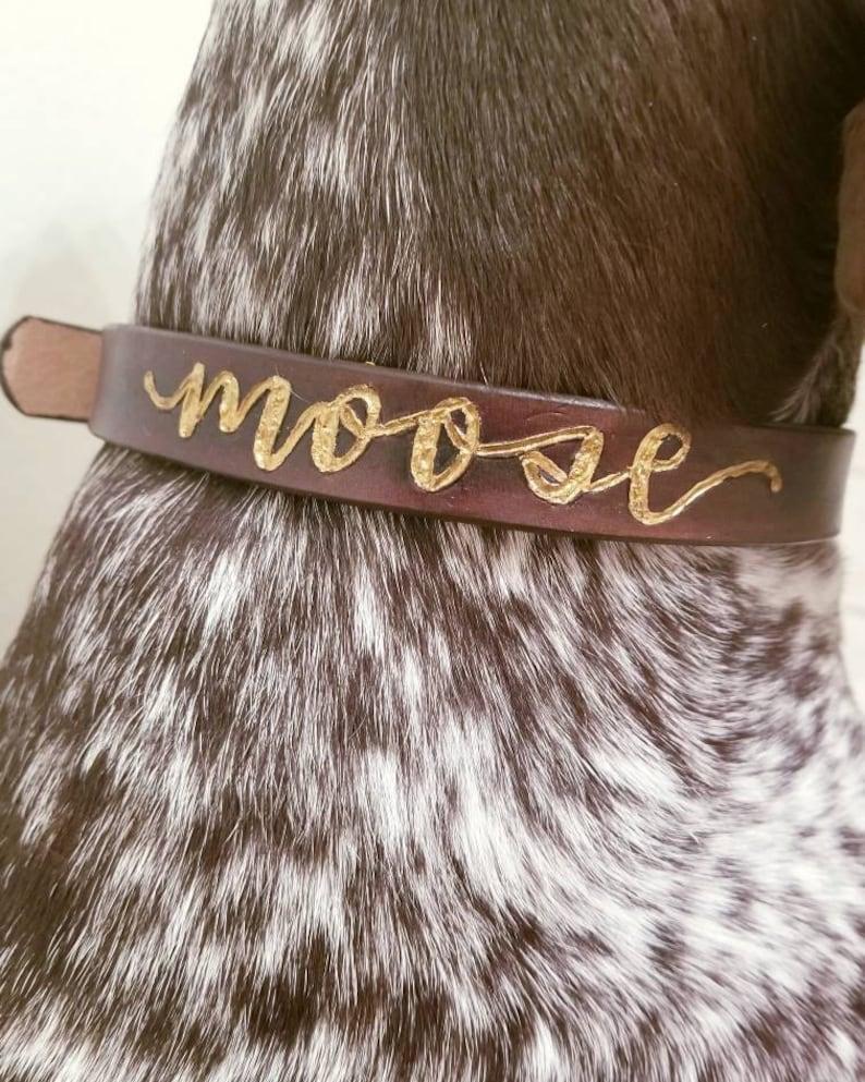 Personalized dog collar custom dog collar dog collar image 0