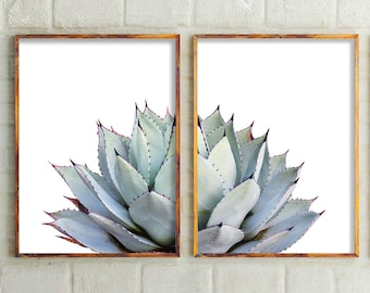 Cactus Print Set Of 2 Prints Wall DecorModern Home DecorBotanicalCactus ArtCactus ArtWall Art Bedroom ArtAustralia
