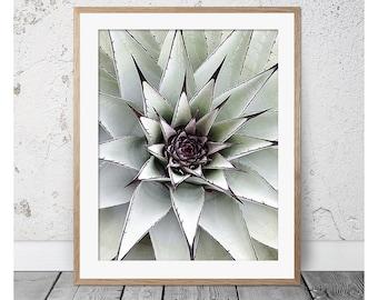 Cactus, Cactus Print, Succulent, Succulent Print, Cactus Wall Art, Green Print, Scandi, Cactus Art, Cactus Poster, Cactus Photography, Cacti