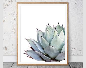 Cactus Print,Succulent Print,Cacti Print,Cactus Wall Decor,Botanical Print,Cactus Art,Coastal,Wall Art,Poster,Agave Print,Cactus Photography