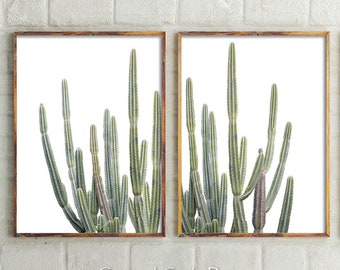 Cactus Print, Printable Wall Art, Modern Home Decor, Set Of 2 Prints, Desert Wall Art, Botanical Print Set, Cactus Wall Art Prints, Boho