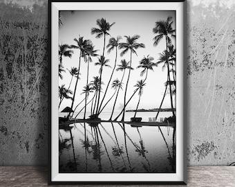 Black and White Photography, Palm Trees Print, Tropical Print, Ocean Print, Palm Print, Coastal Art, Beach Wall Art, B & W, Beach Print, 120