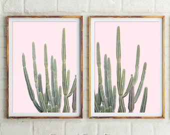 Pink Cactus Prints, Wall Decor, Prints, Succulents, Nursery Wall Art, Art Prints, Australia, Cactus Wall Art, Cactus, Botanical Art, Gifts
