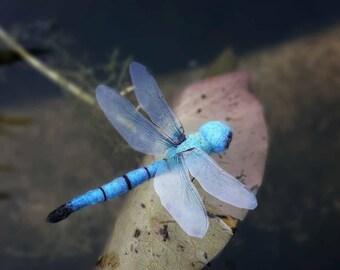 Big Dragonfly !!! Felt Birdhouse Sale