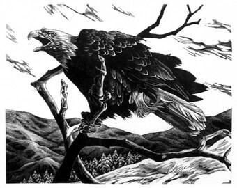 Bald Eagle wood engraving