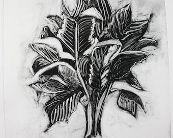 Botanical Palm Monoprint One Off Illustration