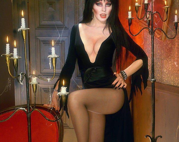 Elvira, Mistress of the Dark - 5X7 or 8X10 Halloween Publicity Photo (OP-228)