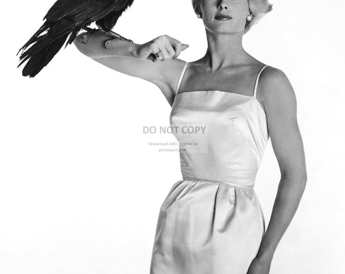 """Actress Tippi Hedren in the Alfred Hitchcock Film """"The Birds"""" - 5X7, 8X10 or 11X14 Publicity Photo (NN-120)"""