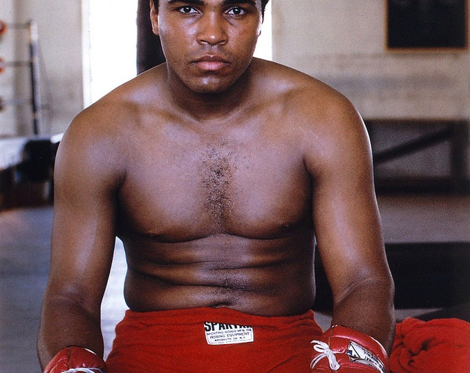 """Muhammad Ali Legendary Boxer """"The Greatest"""" - 5X7 or 8X10 Publicity Photo (ZY-149)"""