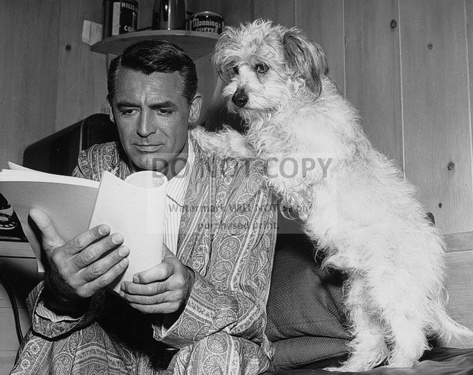 Cary Grant Reviews Script with Dog's Paws on His Shoulder - 5X7 or 8X10 Photo (ZZ-309)