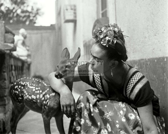 Mexico Black And White Print Vintage Photo 1939 Frida Kahlo With Deer