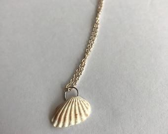 Broad Ripple Cardita Shell Necklace