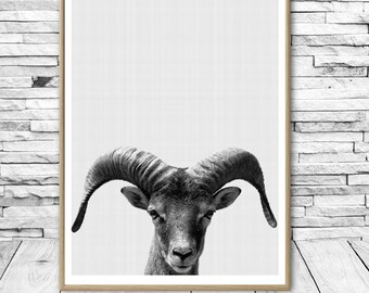 Goat Print Farm Animal Printable Wall Art Black and White Animal Print Digital Download Nursery Animal Print Modern Minimalist Wall Art