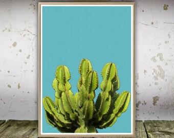 Cactus Print, Cactus Printable, Wall Print, Cactus Wall Art, South Western, Desert Print, Art Print, Printable Wall Art, Minimalist Print