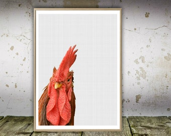 Chicken Print, Chicken Wall Art, Kitchen Wall Art, Rooster, Farm Chicken Print, Printable Art Gift, Chicken Nursery Art, Wall Art Decor