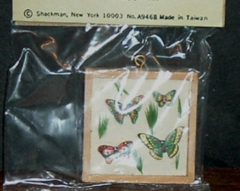 Miniature BUTTERFLY DISPLAY BOX (Shackman)