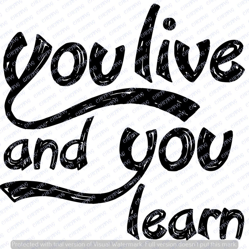 You Live And You Learn Svg Quote Quote Overlay Svg Vinyl Etsy