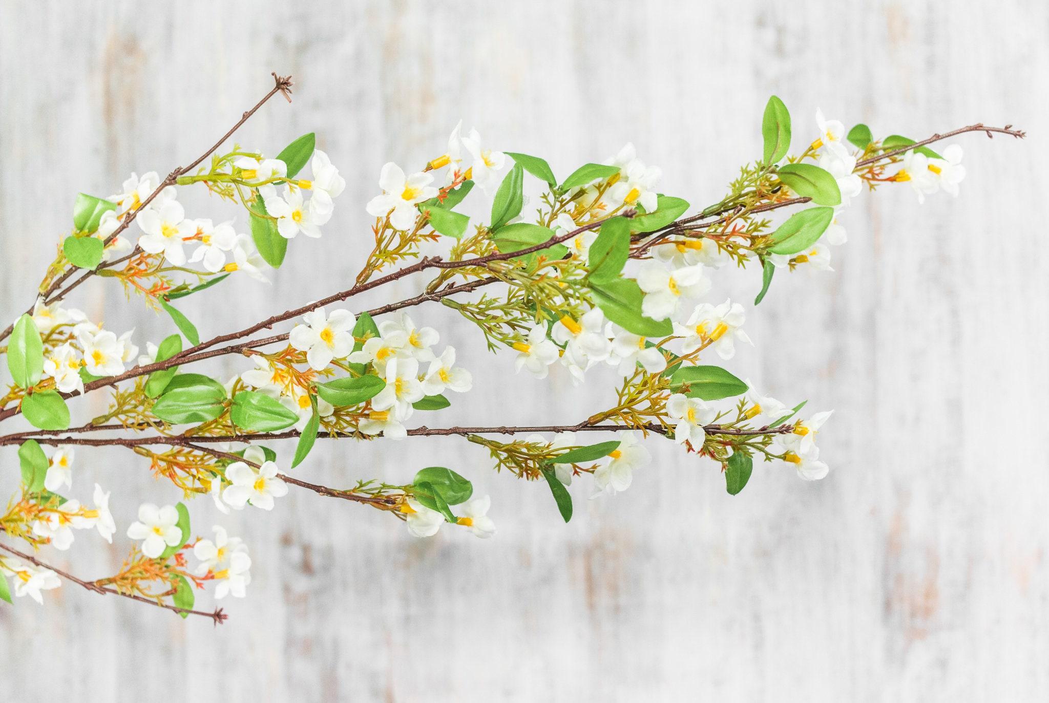 23612 Pcs 55 Large Long Stem White Dogwood Blossoms Etsy