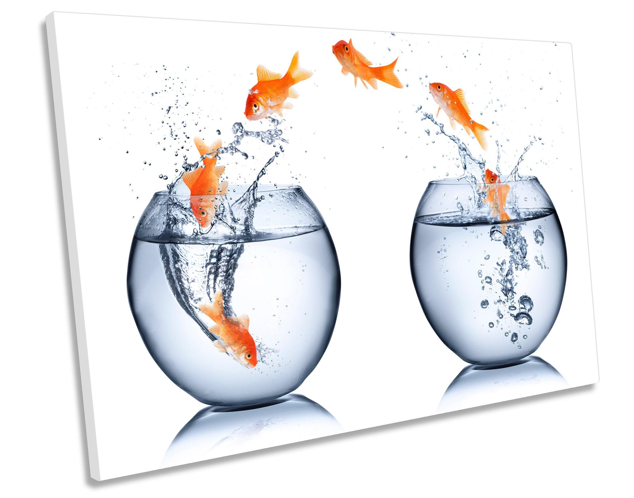 Springender Goldfisch Schale Bild Leinwand Wand Kunst Druck | Etsy