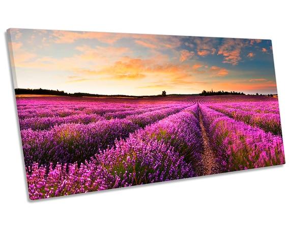 Lavande coucher de soleil paysage panorama toile murale art photo print