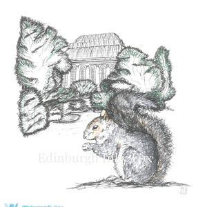 Amateur-Eichhörnchen Mädchen niedliches Mädchen, das von einem dicken Schwanz gefickt wird