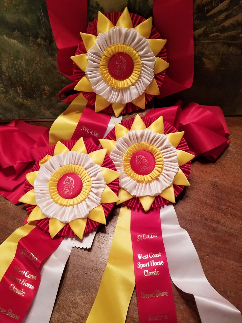 Horse Show Ribbons for the Horse