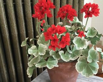 Crepe Paper Potted Red Geranium Plant