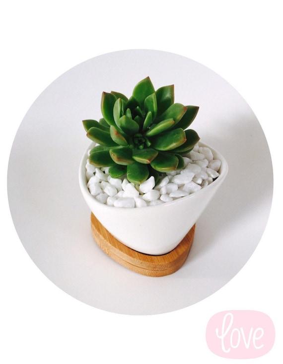 Medium Oval Ceramic Pot Wedding Favour