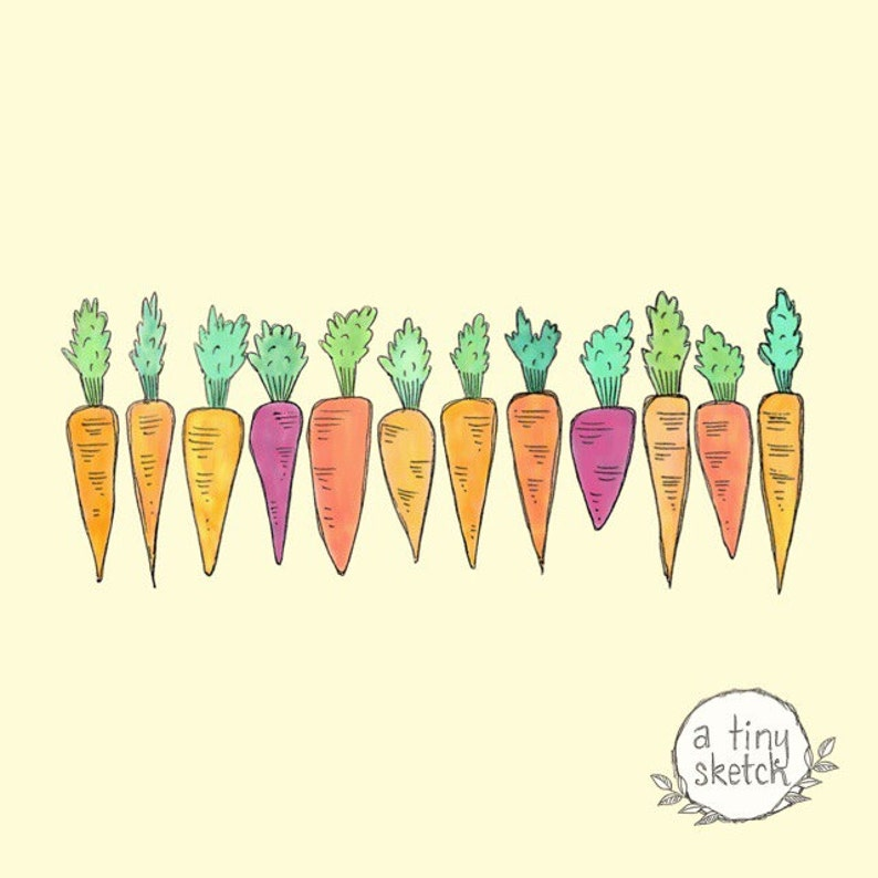Carrots Clipart 12 Png Files With Transparent Backgrounds Etsy