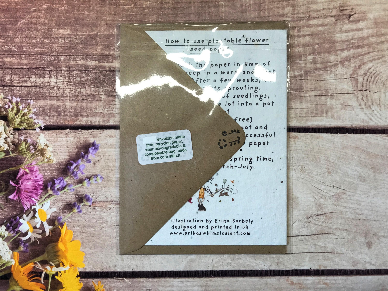 plantable seed paper birthday card blank inside flower