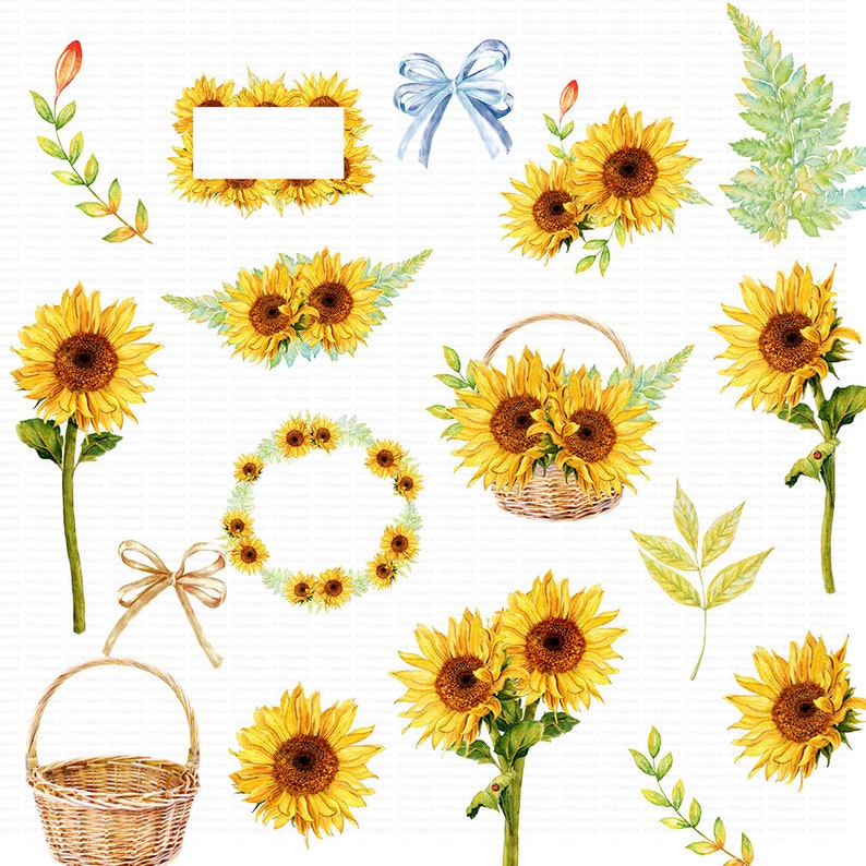 Sunflower Watercolor Clipart Rustic Fall Flower Vibrant | Etsy