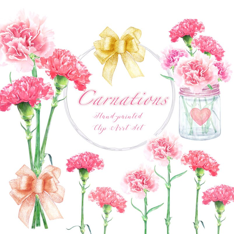 Watercolor Carnation Clipart Mothers day Flowers and Vases ...