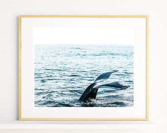 Whale Tail Print, Ocean Wall Art, Landscape Photography Print, Whale Wall Art, Animal Wall Decor, Ocean Photography Art, Whale Printable