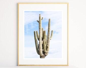 Desert Cactus Print, Arizona Desert Art, Cactus Photography Print, Western Decor, Desert Prints, Cactus Wall Art, Printable Cactus Print,