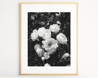 Rose Photo Print, Black and White Photography, Flower Print, Instant Print Download, Printable Art, Flower Photography, Rose Wall Art
