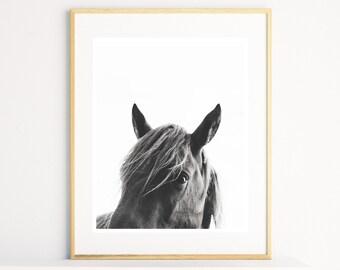 Horse Wall Art, Horse Print, Black and White Photography, Modern Art, Equestrian Art, Animal Prints,  Scandinavian Print, Printable Wall Art