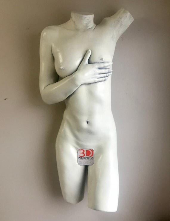 nude-female-torso