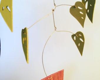 Monstera obliqua houseplant mobile