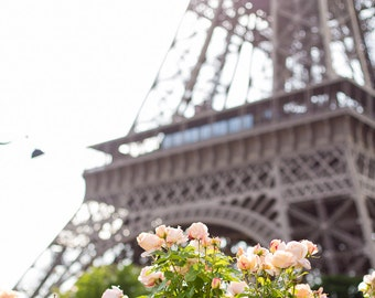 Iconic Eiffel Tower with Pink Roses, Paris Photography, Paris Print, Home Decor, Paris Decor, Living Room wall art